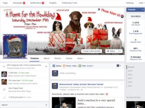 shenandoah valley animal services facebook